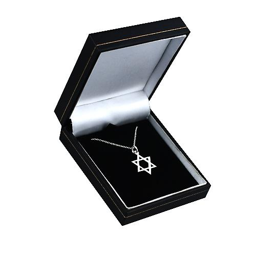 Silver 17x17mm plain Star of David Pendant with a Rolo chain