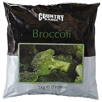 Land-Bereich eingefroren Broccoli-Röschen