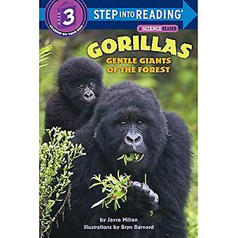 Gorillas: Gentle Giants of the Forest (Step into reading)