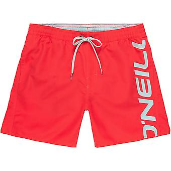 O'Neill Quick Dry Swim Shorts ~ Cali Swim divan