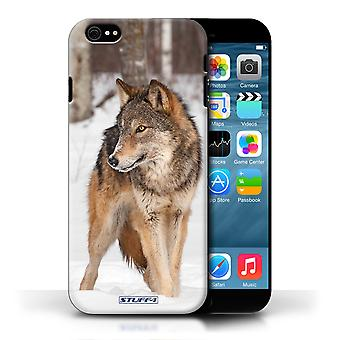STUFF4 Phone Case / Cover for Apple iPhone 6 / Wolf Design / Wildlife Animals Collection