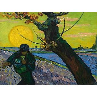 The sower Poster Print by Vincent van Gogh