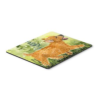 Carolines Treasures  SS8884MP Norwich Terrier Mouse pad, hot pad, or trivet
