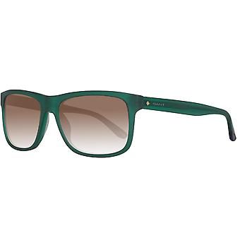 Gant sunglasses mens Green