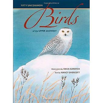 Fifty Uncommon Birds of the Upper Midwest (Bur Oak Book)