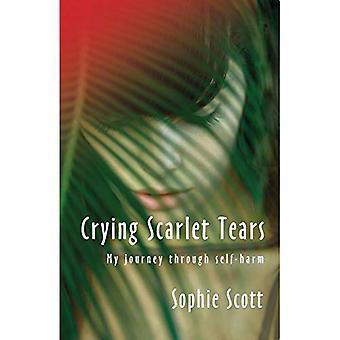 Llorando lágrimas escarlatas: Mi viaje a través de uno mismo-daño
