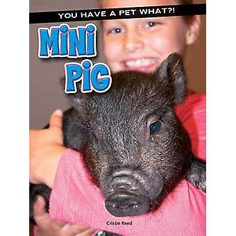Mini Pig by Cristie Reed - 9781634304313 Book