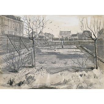 Blume-Kindergarten auf den Schenkweg In den Haag von Vincent Van Gogh 1882 Pinsel niederländische Zeichnung Bleistift Stift malen auf Papier-Plakat-Druck