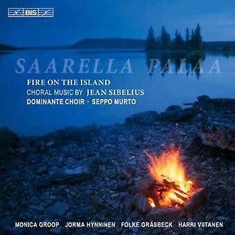 J. Sibelius - Saarella Palaa [CD] USA import