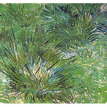 Vincent Van Gogh - Clumps of Grass, 1889 Poster Print Giclee