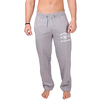 Men's College Sweatpant Grey