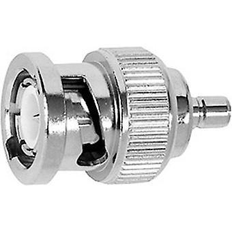 Coax adapter BNC plug-SMB plug Telegärtner J01008G00381 pc(s)