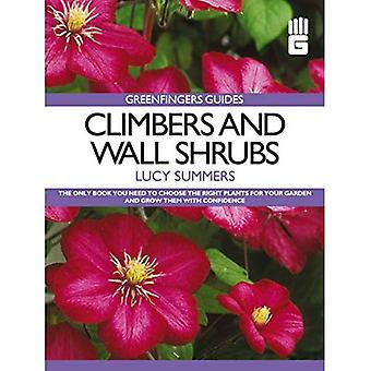 Greenfingers Guides: Climbers and Wall Shrubs