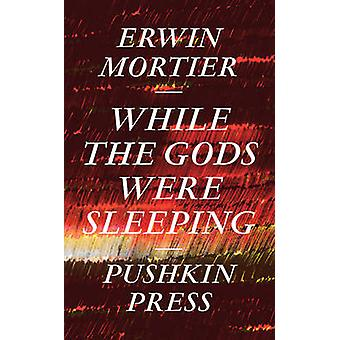 While the Gods Were Sleeping by Erwin Mortier - Paul Vincent - David