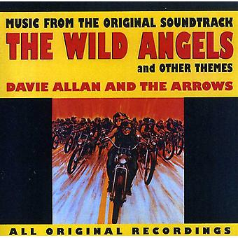 Davie Allan & Arrows - Wild Angels & Other Themes [CD] USA import
