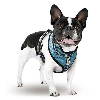 Xt-Dog Arnes Summer M (Dogs , Collars, Leads and Harnesses , Harnesses)