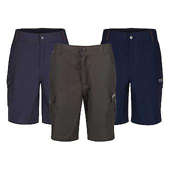 Regatta Herren Delph Shorts