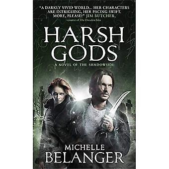 Harsh Gods: A Novel of the�Shadowside (Conspiracy of�Angels)