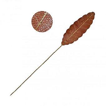 Wellindal Abbigliamento Orange Leaf Cane 2 Metri (Decorazione , Piante e vasi)