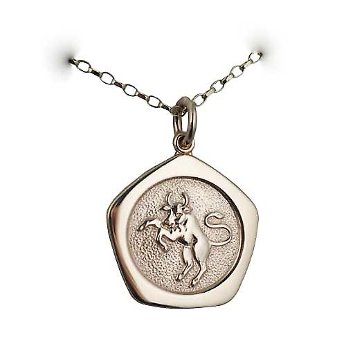 9ct Gold 21mm five sided Taurus Zodiac Pendant with a belcher Chain 16 inches Only Suitable for Children