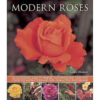 Modern Roses: An Illustrated Guide to Varieties, Cultivation and Care, with Step-by-step Instructions and Over...