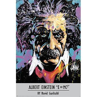 Albert Einstein - David Garibaldi Poster Poster afdrukken