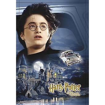 Harry Potter and the Chamber of secrets of Castle, car, Harry