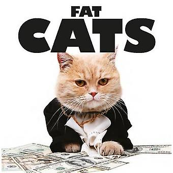 Fat Cats by Kat Scratching - 9781782744290 Book