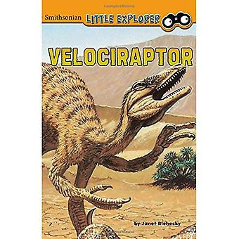 Velociraptor (Little Paleontologist) (Smithsonian Little Explorer)