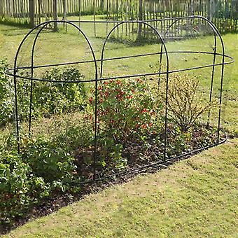 Haxnicks Long Steel Fruit Cage 3m
