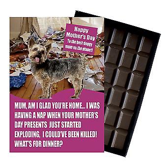 Yorkshire Terrier hundälskare mors dag present choklad present till mamma mamma