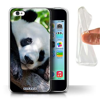 STUFF4 Gel TPU Phone Case / Cover for Apple iPhone 5C / Panda Bear Design / Wildlife Animals Collection