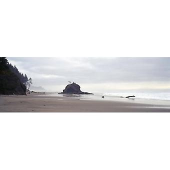 Küste-La Push-Olympic Nationalpark, WA-Plakat-Druck