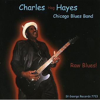 Hayes, Charles Hog Chicago Blues Band - rå Blues [CD] USA import
