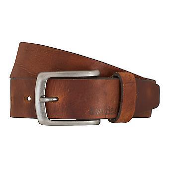 Cinturones de cinturón cinturones de hombres LLOYD de cuero correa cuero brandy 5366