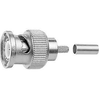 BNC connector Plug, straight 75 Ω Telegärtner J01002F1352z 1 pc(s)