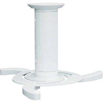 NewStar BEAMER-C80WHITE Projector ceiling mount Tiltable, Rotatable Max. distance to floor/ceiling: 15 cm White