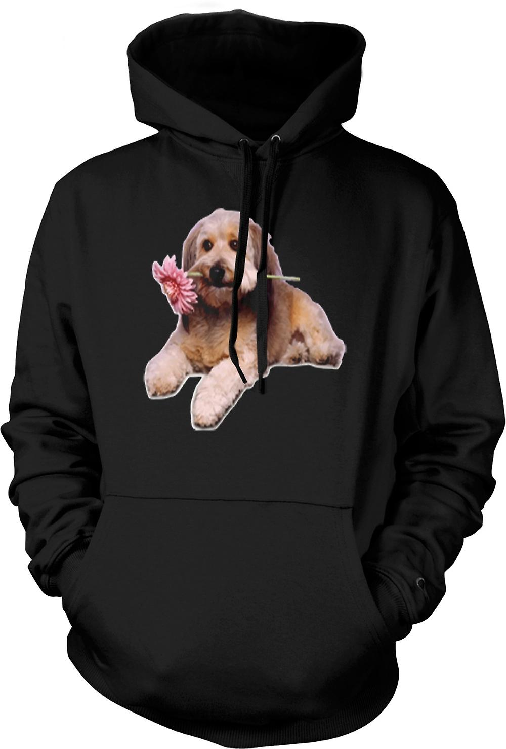 Mens Hoodie - Cute Puppy Dog Portrait