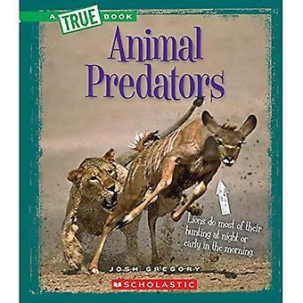 Tierische Räuber (echte Bücher: erstaunlich, Tiere)