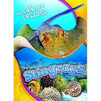 Stingrays by Rebecca Pettiford - 9781626174238 Book