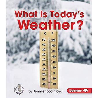Quel est le temps d'aujourd'hui? (First Step Nonfiction Let's Watch the Weather)