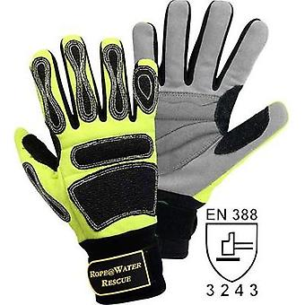 FerdyF. 1978 Size (gloves): 8, M