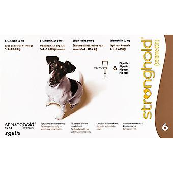 Stronghold Brown Dogs 11-22lbs (5-10kg) - 6 Pack