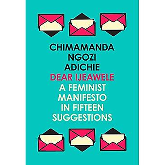 Dear Ijeawele, or a Feminist�Manifesto in Fifteen�Suggestions