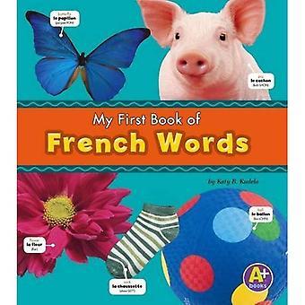 Tospråklige ordbøker bildepakken A 6