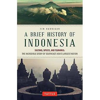 Brief History of Indonesia - Sultans - Spices - and Tsunamis - the Incr
