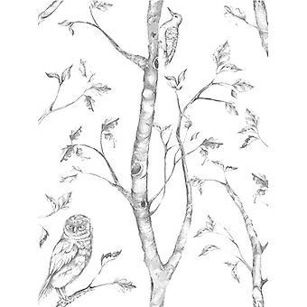 NuWallpaper Woods Peel And Stick Wallpaper Grey Fine Decor NU1412 5.5m
