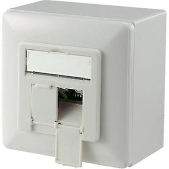 Network outlet Surface-mount CAT 6A 2 ports Digitus Professional Pure white