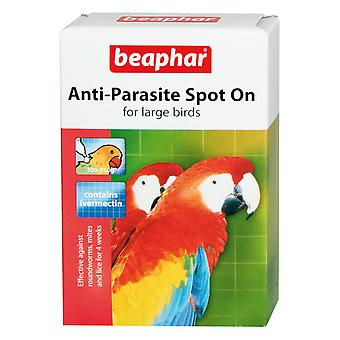 Beaphar Large Bird Anti-parasite Spot-on (Pack of 6)