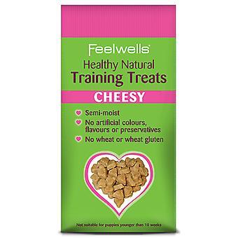 Feelwells sund fysisk uddannelse hund behandler teatralsk 115g (pakke med 7)